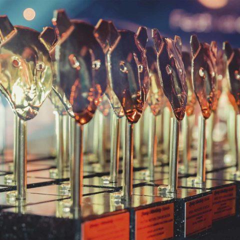 Dos nuevos premios para cerrar el año 2019